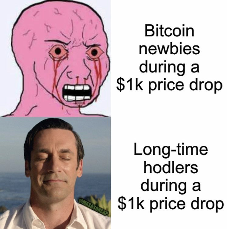 Forehead - Bitcoin newbies during a $1k price drop Long-time hodlers during a $1k price drop OMASASONCAP