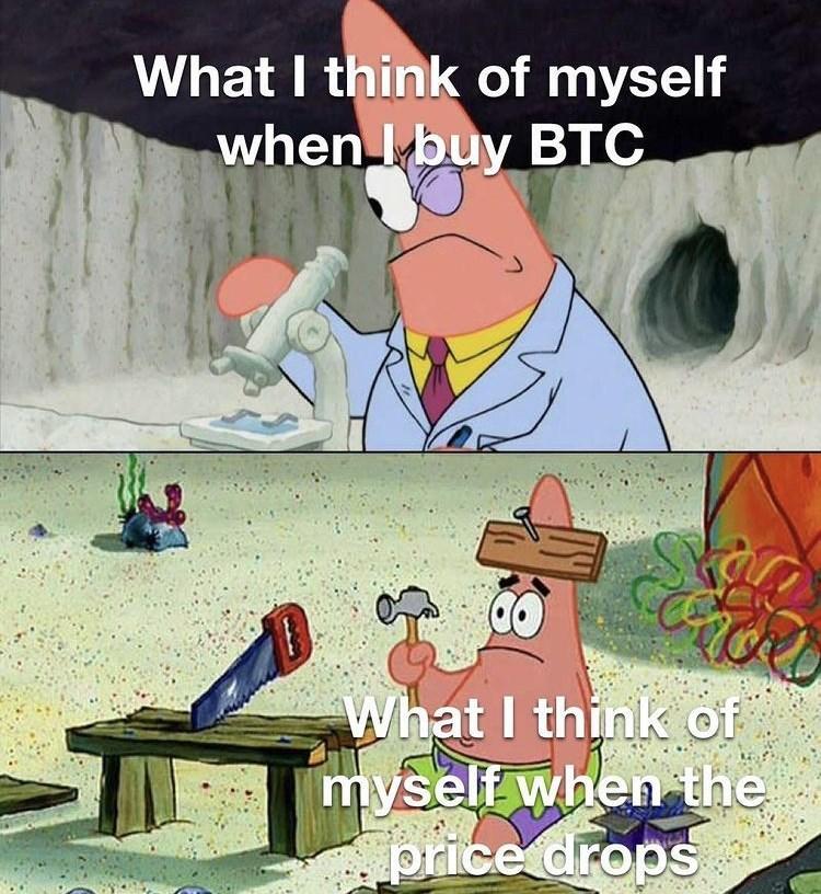 Vertebrate - What I think of myself when I buy BTC What I think of myself when the price drops