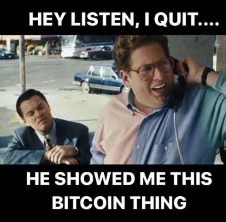 Hair - HEY LISTEN, I QUIT.... HE SHOWED ME THIS BITCOIN THING