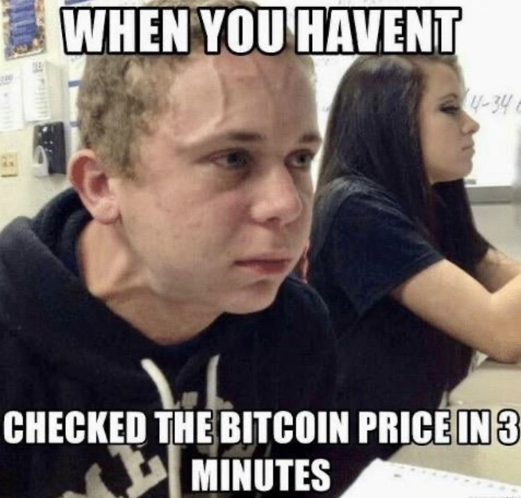 Forehead - WHEN YOU HAVENT 4-34 CHECKED THE BITCOIN PRICE IN 3 MINUTES