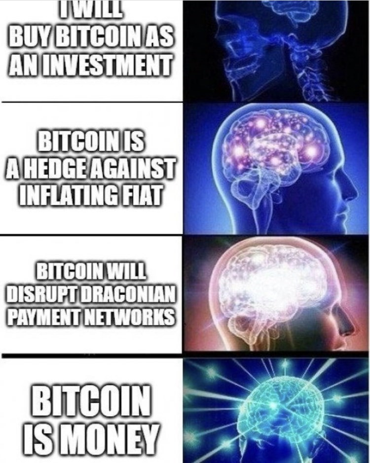 Organ - UWILL BUY BITCOIN AS AN INVESTMENT BITCOIN IS A HEDGE AGAINST INFLATING FIAT BITCOIN WILL DISRUPT DRACONIAN PAYMENT NETWORKS BITCOIN IS MONEY