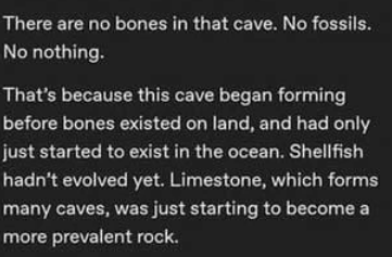 Font - There are no bones in that cave. No fossils. No nothing. That's because this cave began forming before bones existed on land, and had only just started to exist in the ocean. Shellfish hadn't evolved yet. Limestone, which forms many caves, was just starting to become a more prevalent rock.