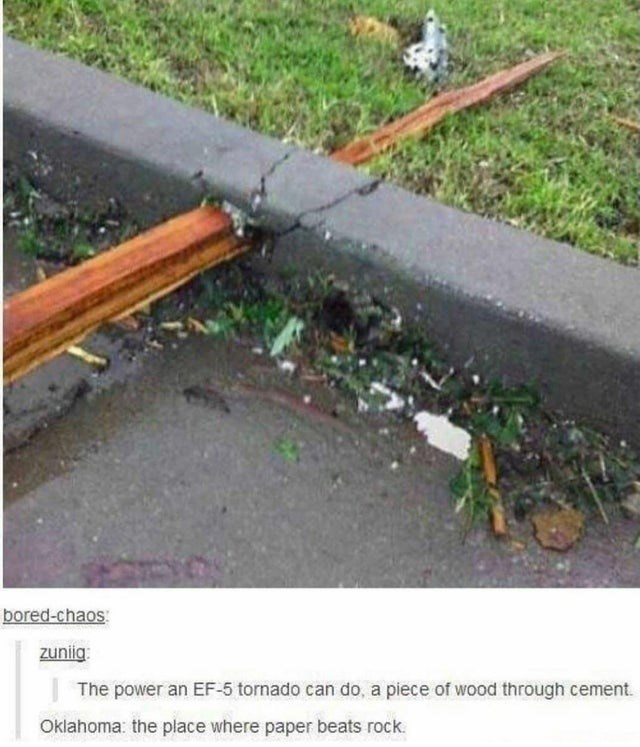 Plant - bored-chaos: zuniig: The power an EF-5 tornado can do, a piece of wood through cement. Oklahoma: the place where paper beats rock.