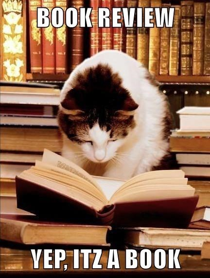 BOOK REVIEW YEP ITZ A BOOK | funny pic of a cat looking at an open book