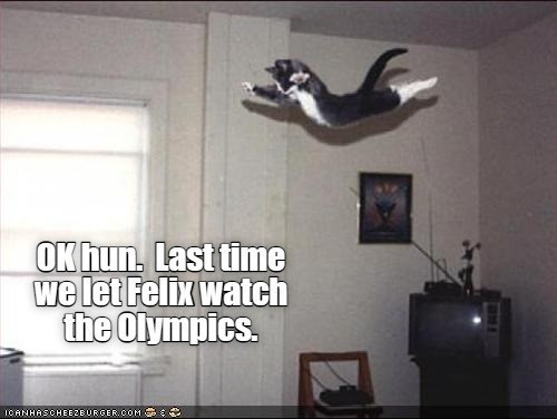 OK hun. Last time we lit Felix watch the olympics | funny pic of a kitten jumping flying midair perfectly timed