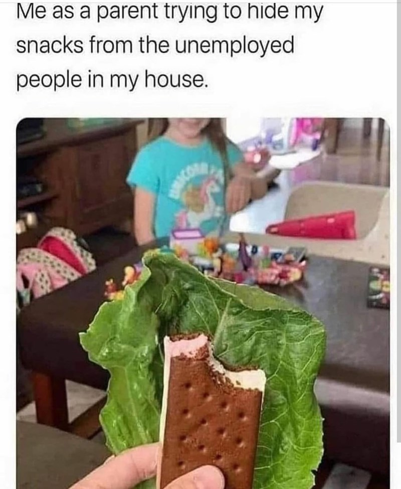 Product - Me as a parent trying to hide my snacks from the unemployed people in my house.