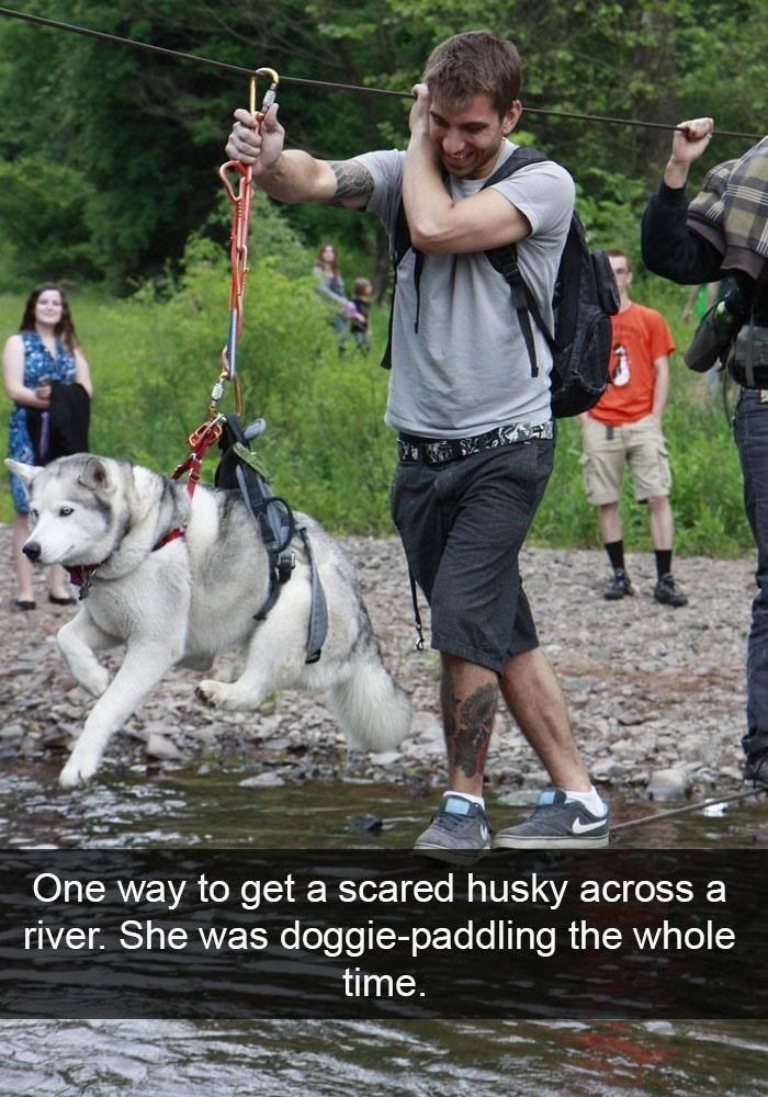 Clothing - One way to get a scared husky across a river. She was doggie-paddling the whole time.
