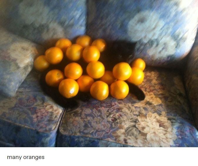 Food - many oranges
