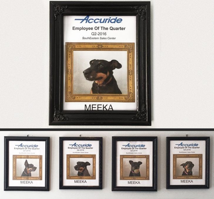 Brown - Accuride Employee Of The Quarter Q2-2016 SouthEastem Sales Center MEEKA Accuride Accuride Accuride Accuride Employee Of The Quarter 02 2016 Employee Of The Quarter 03-20 Snt S Can Employee Of The Quarter OE2016 Employee Of The Quarter MEEKA МЕЕКА МЕЕКА MEEKA