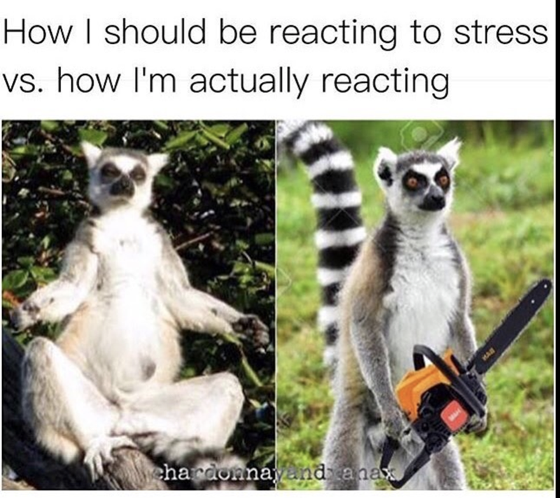 Green - How I should be reacting to stress vs. how I'm actually reacting ehardonnayand anax