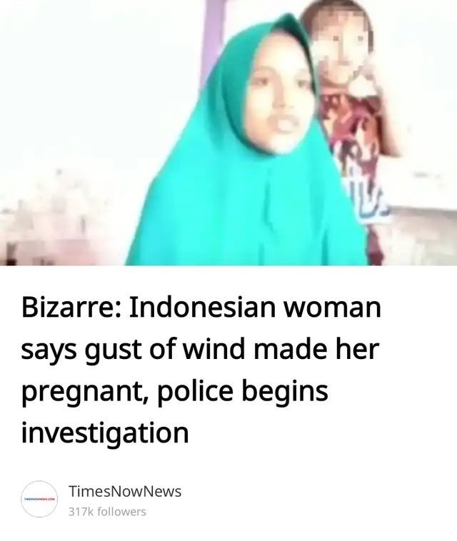 Text - Font - Bizarre: Indonesian woman says gust of wind made her pregnant, police begins investigation TimesNowNews 317k followers