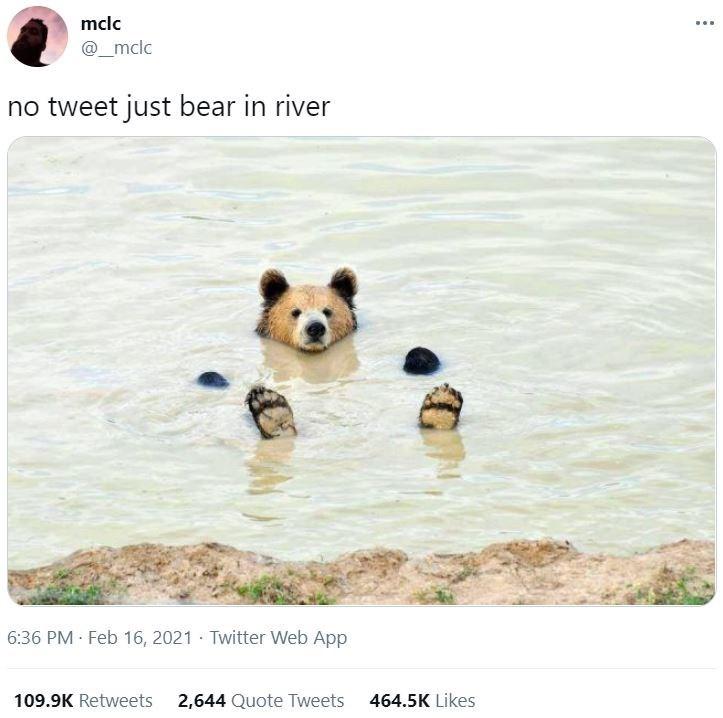 Water - mclc @_mclc no tweet just bear in river 6:36 PM Feb 16, 2021 Twitter Web App 109.9K Retweets 2,644 Quote Tweets 464.5K Likes
