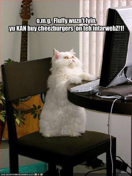 Cheezburger Image 959392000
