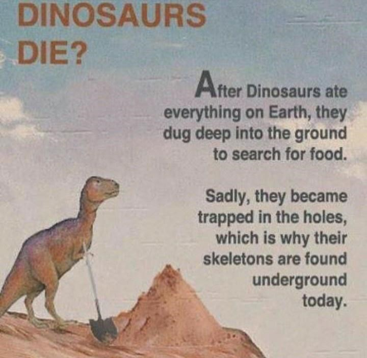 Cloud - DINOSAURS DIE? After Dinosaurs ate everything on Earth, they dug deep into the ground to search for food. Sadly, they became trapped in the holes, which is why their skeletons are found underground today.