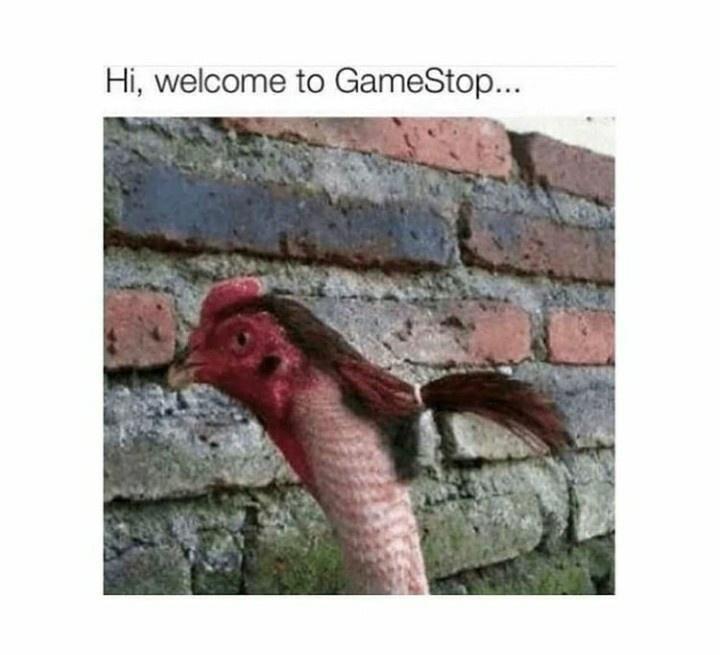 Bird - Hi, welcome to GameStop...