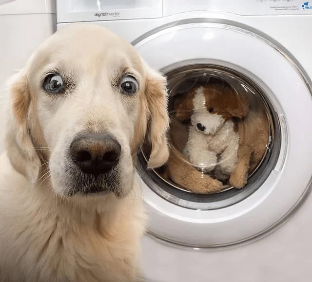Laundry room - digitalinverter