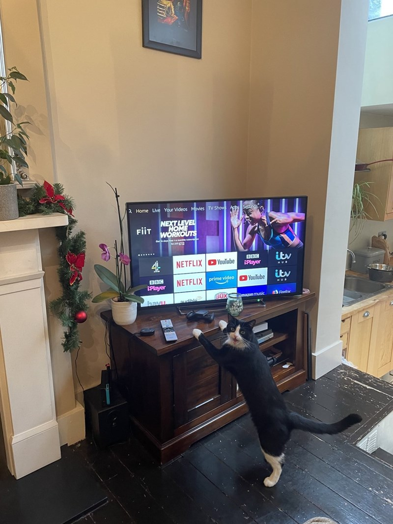 Computer desk - 2 Home Live Your Videos Movies TV Shows App NEXT LEVEL HOME WORKOUTS FiiT Get dey many E12 4 BBC DPlayer itv NETFLIX YouTube HUB itv BBC NETFLIX prime video O YouTube DPlayer Firefox BOX mazon music havu audible