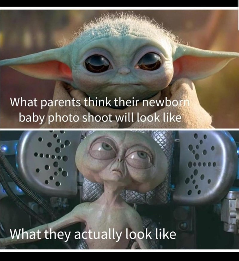Glasses - What parents think their newborn baby photo shoot will look like What they actually look like