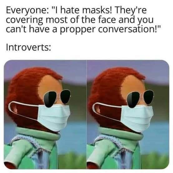 "Cartoon - Everyone: ""I hate masks! They're covering most of the face and you can't have a propper conversation!"" Introverts:"