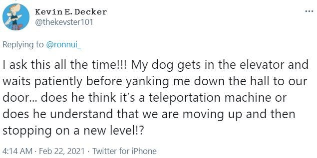 Font - Kevin E. Decker @thekevster101 Replying to @ronnui_ I ask this all the time!!! My dog gets in the elevator and waits patiently before yanking me down the hall to our door... does he think it's a teleportation machine or does he understand that we are moving up and then stopping on a new level!? 4:14 AM - Feb 22, 2021 · Twitter for iPhone
