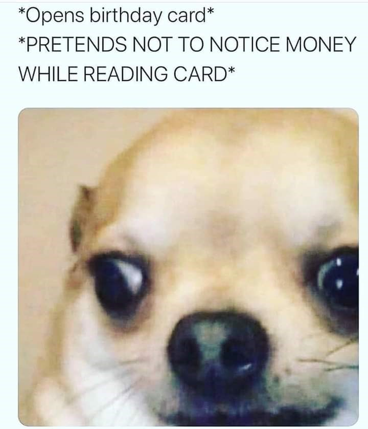 Dog - *Opens birthday card* *PRETENDS NOT TO NOTICE MONEY WHILE READING CARD*
