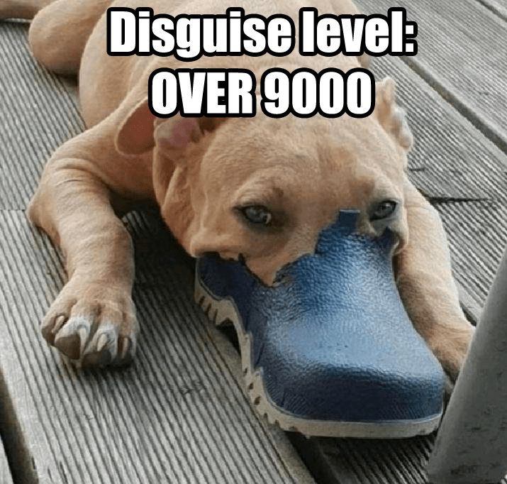 Dog - Disguise level: OVER 9000