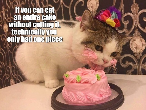 It you can eat an entire cake without cutting it, technically you only had one piece | cute cat in a hat eating a pink cake