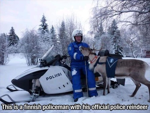 This is a finnish policeman with his official police reindeer
