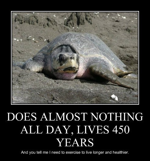 DOES ALMOST NOTHING ALL DAY, LIVES 450 YEARS And you tell me I need to exercise to live longer and healthier. | dometivational poster style tortoise