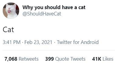 Font - Why you should have a cat @ShouldHaveCat Cat 3:41 PM Feb 23, 2021 · Twitter for Android 7,068 Retweets 399 Quote Tweets 41K Likes