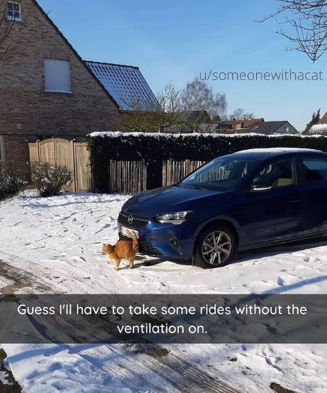 Car - u/someonewithacat Guess l'll have to take some rides without the ventilation on.