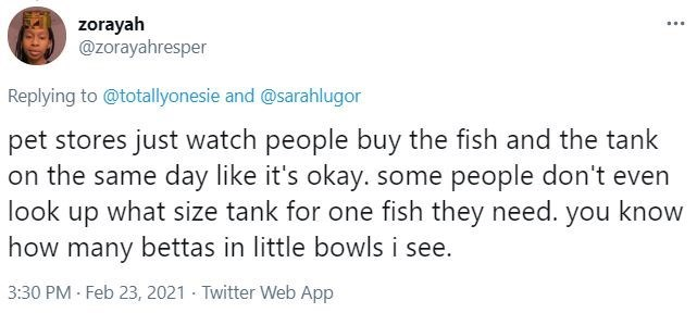 Font - zorayah @zorayahresper Replying to @totallyonesie and @sarahlugor pet stores just watch people buy the fish and the tank on the same day like it's okay. some people don't even look up what size tank for one fish they need. you know how many bettas in little bowls i see. 3:30 PM Feb 23, 2021 · Twitter Web App