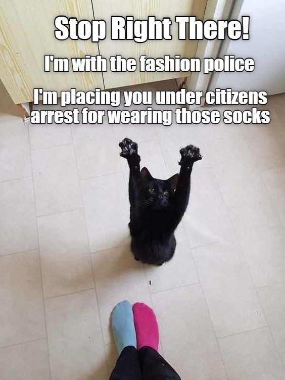 Gesture - Stop Right There! I'm with the fashion police Fm placing you under citizens arrest for wearing those socks