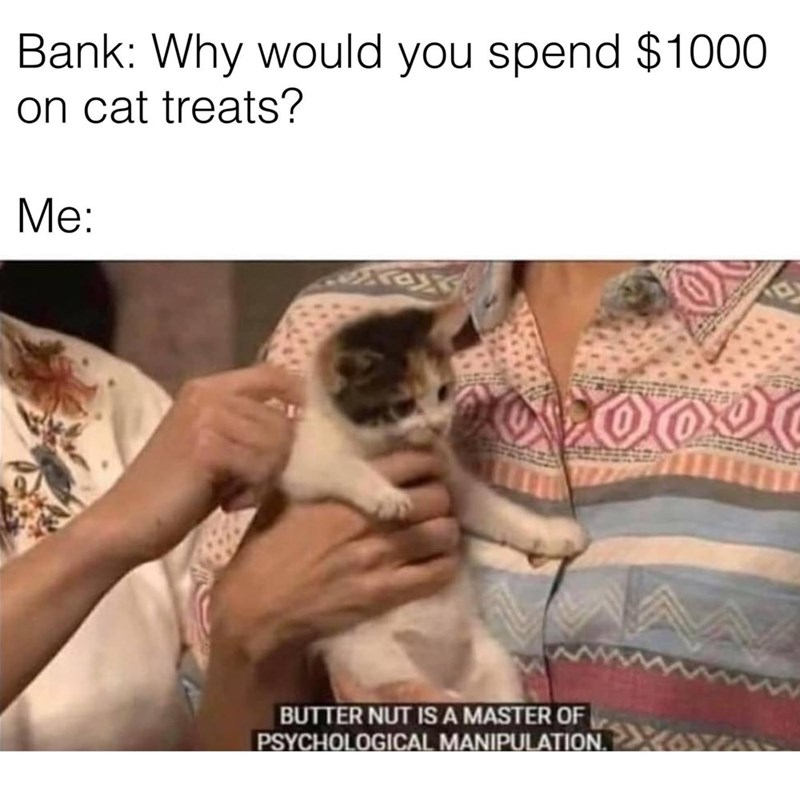 Hand - Bank: Why would you spend $1000 on cat treats? Me: BUTTER NUT IS A MASTER OF PSYCHOLOGICAL MANIPULATION.