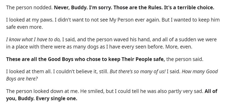 Font - The person nodded. Never, Buddy. I'm sorry. Those are the Rules. It's a terrible choice. I looked at my paws. I didn't want to not see My Person ever again. But I wanted to keep him safe even more. I know what I have to do, I said, and the person waved his hand, and all of a sudden we were in a place with there were as many dogs as I have every seen before. More, even. These are all the Good Boys who chose to keep Their People safe, the person said. I looked at them all. I couldn't believ