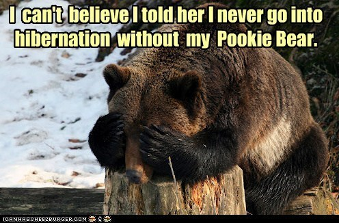 I can't believe, l told her I never go into hibernation without my Pookie Bear. | funny pic of a bear hiding its face