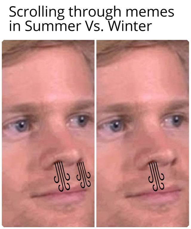 Funny meme about how you can only breathe out of one nostril during the winter, in summer you can breathe normally, looking at memes