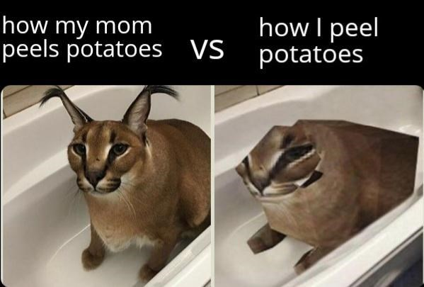 Funny meme about how moms peel potatoes better than their children, caracal in a bathtub