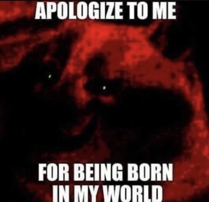 Font - APOLOGIZE TO ME FOR BEING BORN IN MY WORLD