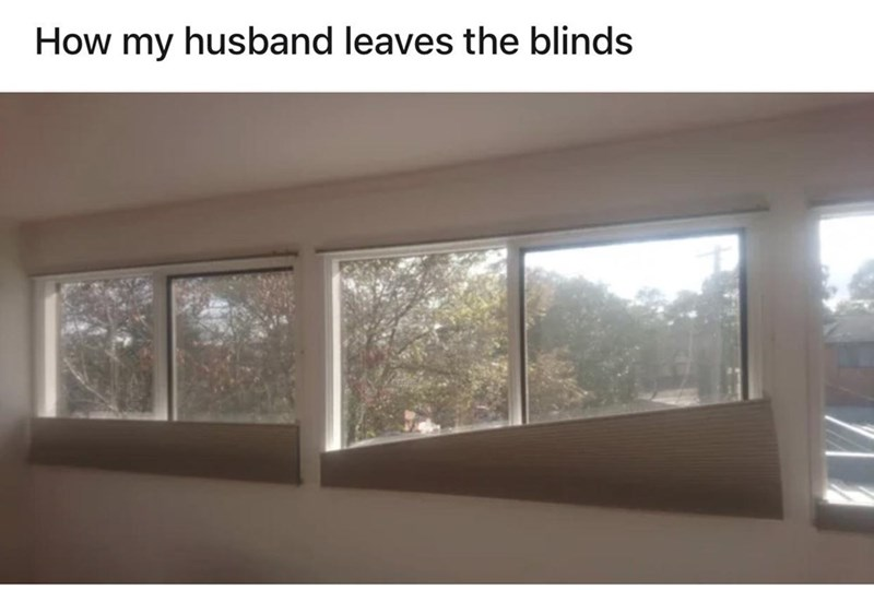 Brown - How my husband leaves the blinds