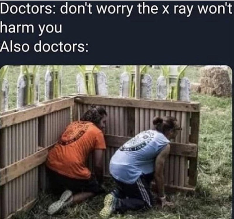 Vertebrate - Doctors: don't worry the x ray won't harm you Also doctors: