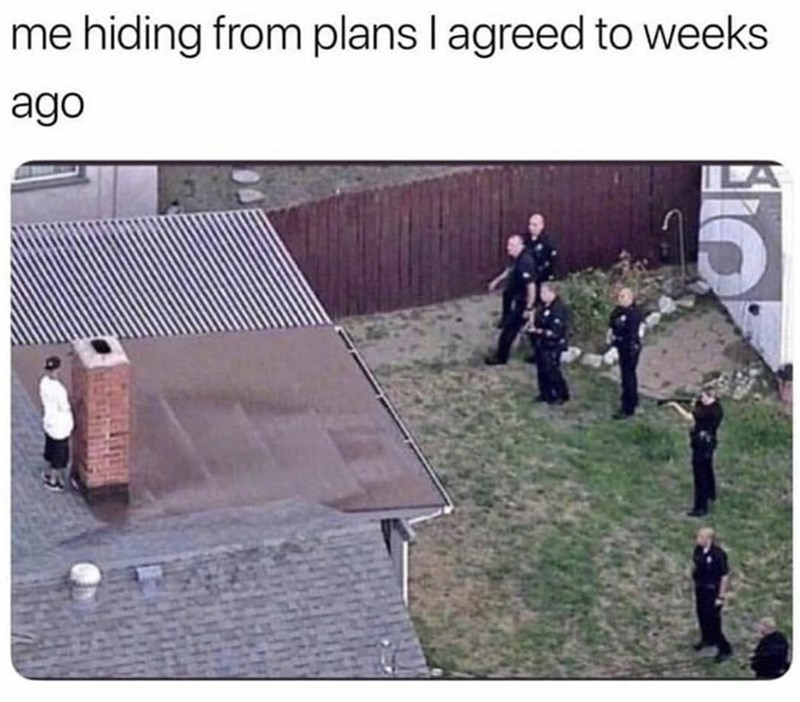 Font - me hiding from plans I agreed to weeks ago