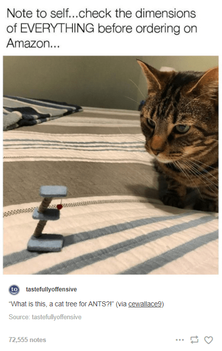 """Cat - Note to self...check the dimensions of EVERYTHING before ordering on Amazon... to tastefullyoffensive """"What is this, a cat tree for ANTS?!"""" (via cewallace9) Source: tastefullyoffensive 72,555 notes ..."""