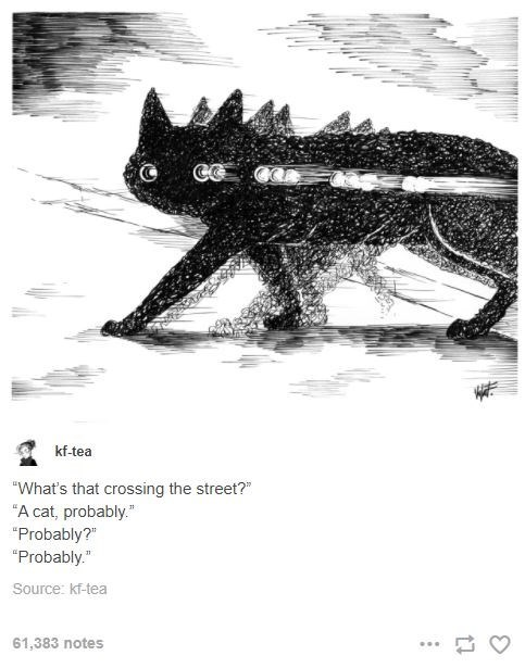 """Carnivore - kf-tea """"What's that crossing the street?"""" """"A cat, probably."""" """"Probably?"""" """"Probably."""" Source: kf-tea 61,383 notes ..."""