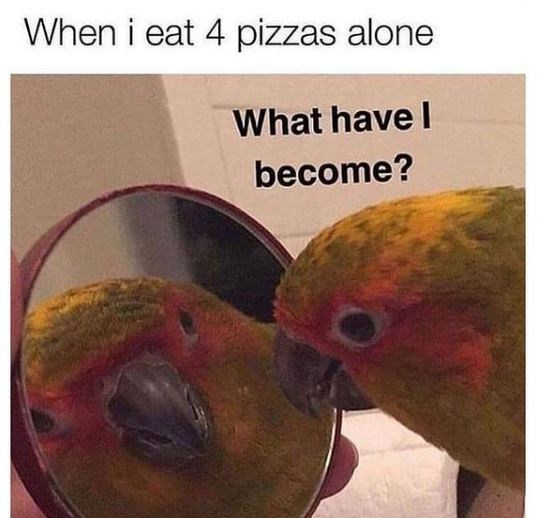Organism - When i eat 4 pizzas alone What have I become?