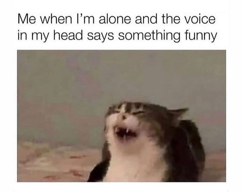 Jaw - Me when I'm alone and the voice in my head says something funny