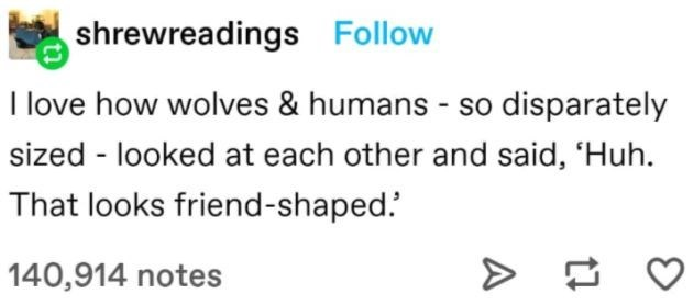 Human body - shrewreadings Follow I love how wolves & humans - so disparately sized - looked at each other and said, 'Huh. That looks friend-shaped.' 140,914 notes