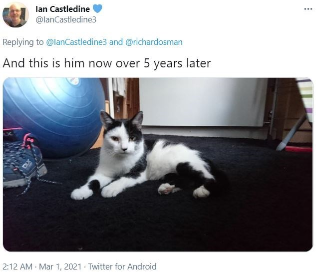 Cat - lan Castledine @lanCastledine3 ... Replying to @lanCastledine3 and @richardosman And this is him now over 5 years later 2:12 AM - Mar 1, 2021 Twitter for Android