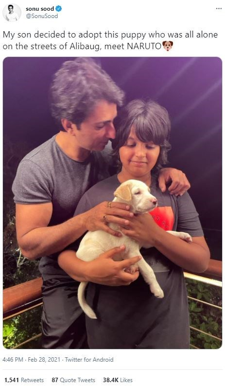Clothing - sonu sood @SonuSood My son decided to adopt this puppy who was all alone on the streets of Alibaug, meet NARUTO 4:46 PM · Feb 28, 2021 - Twitter for Android 1.541 Retweets 87 Quote Tweets 38.4K Likes
