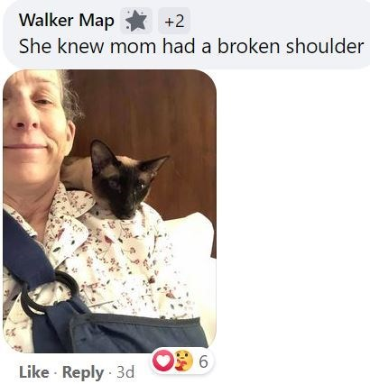 Cat - Walker Map * +2 She knew mom had a broken shoulder 6 Like · Reply · 3d